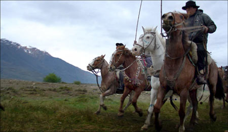 Mapuche on horse