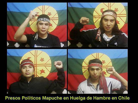 Presos Mapuche