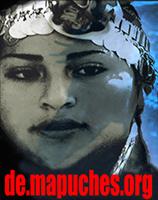 Mapuche Banner