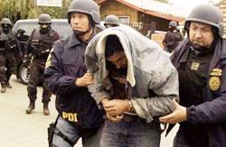 arresti di mapuche