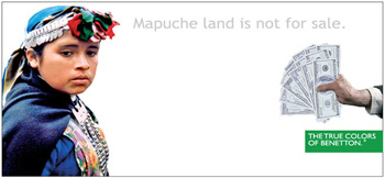 Mapuche land is not for sale